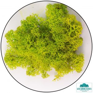 light green lichen moss